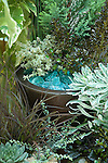 In this blue-green motif, aqua-colored tumbled glass mimics the colors of, among others, Hens-and-chicks 'Lavender and Old Lace' (bottom left corner), Phormium 'Jack Spratt' (tall plant, bottom left), silver thyme (rear copper pot, left side), and Euphorbia 'Glacier Blue' (right middle).