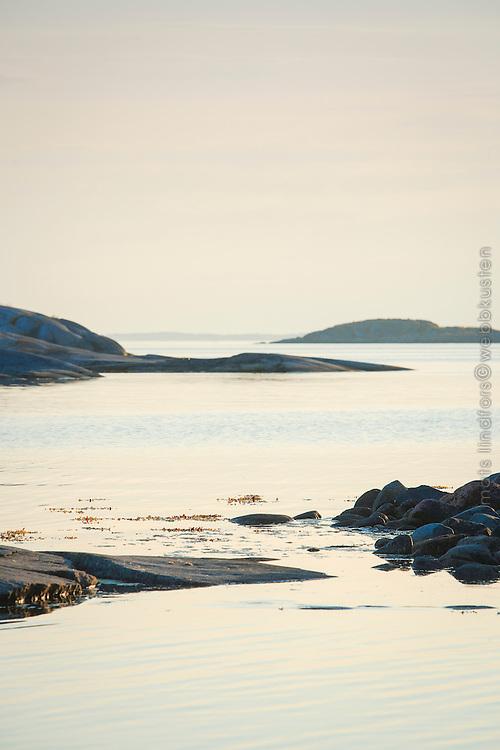 Låga skär en disig kväll i Roslagen Stockholms ytterskärgård. / Low skerries a hazy evening in the Stockholm archipelago.