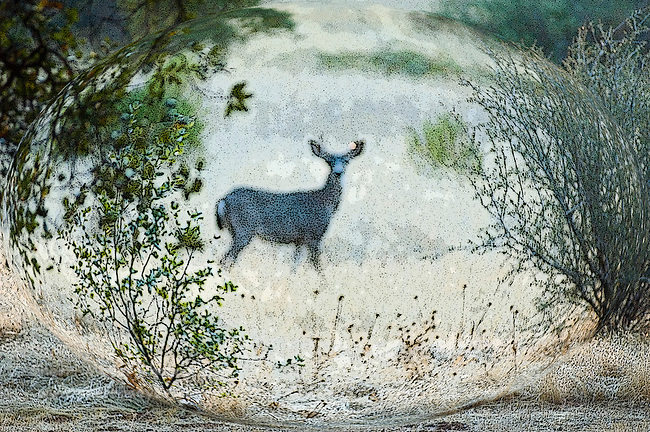Digital art of a deer in a meadow, created from a original photograph