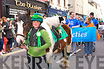 Paula May Duggan at the St. Patrick's Day Parade Tralee 2014