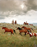 USA, Montana, horses running by cowboys at dusk, Gallatin National Forest, Emigrant