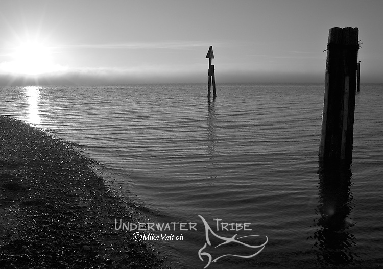 Old pier piling and channel marker at Crescent Beach, Surrey, Vancouver, British Columbia, Canada, Pacific Ocean