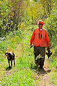 00515-074.07 Ruffed Grouse hunter carrying bagged grouse and dog Pudelpointer walk a woodland trail.  Hunt, logging, public land.