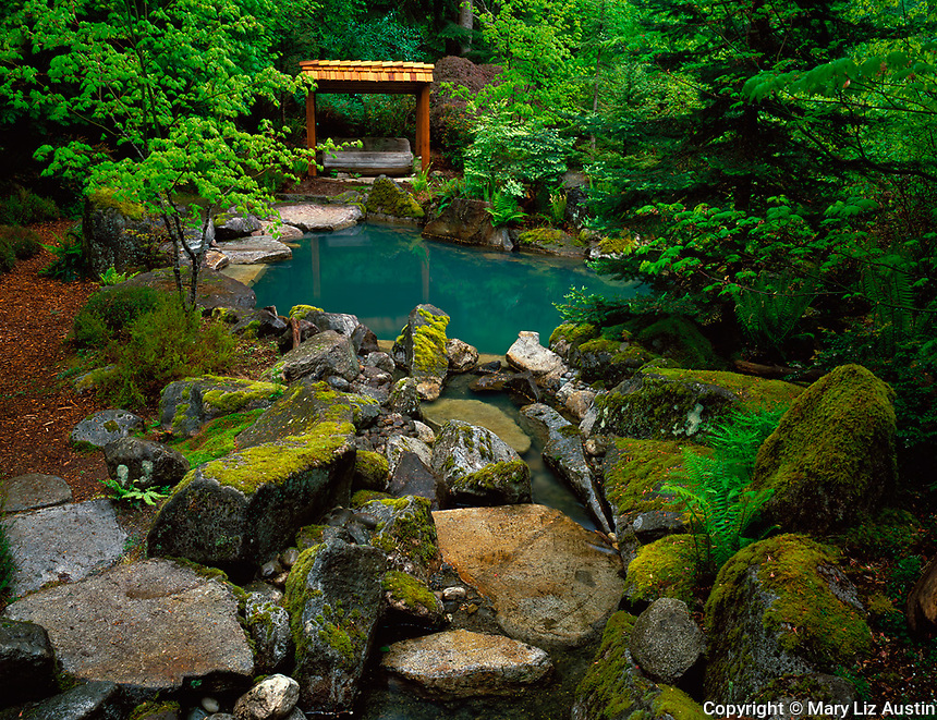 Woodinville, WA<br /> Moss covered boulders lead down to a salt water plunge pool surrounded by vine maples and Northwest natives in the Welch Sanctuary in spring