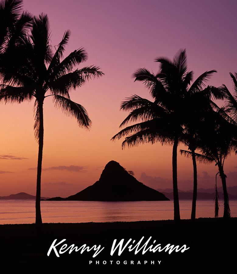 Chinaman's Hat & Palm Tress at Sunrise, also known as Mokolii Island, Oahu, Hawaii, USA.