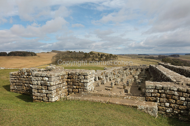 Granary or horreum, used to store the huge quantities of food required by hundreds of soldiers, with strong buttressed stone walls with air vents, an overhanging roof to keep rain away and raised floors to allow air circulation, at Housesteads Roman Fort, on Hadrian's Wall, Northumberland, England. The granary is on the highest, driest part of the fort, and had 2 storeys with a roof supported on a row of 6 pillars. 2 entrances faced an open area for easy unloading and turning of carts. This building was later modified into 2, visible today, each with its own roof. Housesteads Fort was built in 124 AD and is the most complete Roman fort in Britain, built by legionaries to house 10 centuries of auxiliary soldiers based on the frontier. Hadrian's Wall was built 73 miles across Britannia, now England, 122-128 AD, under the reign of Emperor Hadrian, ruled 117-138, to mark the Northern extent of the Roman Empire and guard against barbarian attacks from the Picts to the North. The wall was fortified with milecastles with 2 turrets in between, and a fort about every 5 Roman miles. This section of the Wall is in the Northumberland National Park, managed by the National Trust, and the Hadrian's Wall Path, an 84-mile coast to coast long distance footpath, runs alongside it. Picture by Manuel Cohen