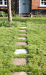 Garden path leading past apple tree to front door of house, UK