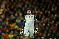 8th November 2019; Carrow Road, Norwich, Norfolk, England, English Premier League Football, Norwich versus Watford; A dejected looking Tim Krul of Norwich City - Strictly Editorial Use Only. No use with unauthorized audio, video, data, fixture lists, club/league logos or 'live' services. Online in-match use limited to 120 images, no video emulation. No use in betting, games or single club/league/player publications