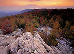 Kittantinny Ridge near Lehigh Furnace Gap, Appalachian Trail, Pennsylvania