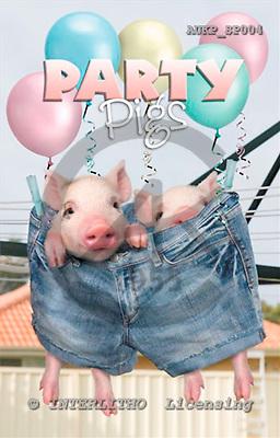 Samantha, ANIMALS,  photos+++++,AUKPSP004,#A# Humor, lustig, divertido