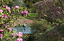 08/04/15<br /> <br /> As the fantastic spring weather continues, a couple admire rhododendrons from a bridge in the gardens of Chatsworth House in the Derbyshire Peak District.<br /> <br /> All Rights Reserved - F Stop Press.  www.fstoppress.com. Tel: +44 (0)1335 418629 +44(0)7765 242650
