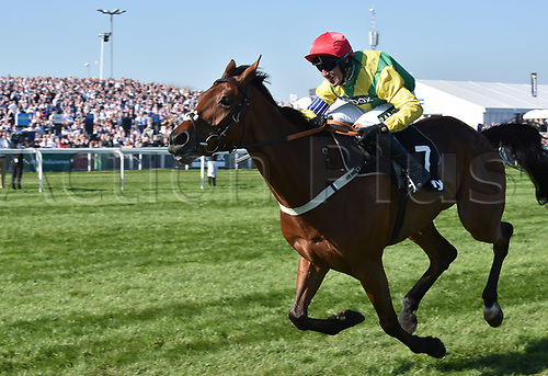 April 8th 2017, Aintree Racecourse, Liverpool, England; Randox Health Grand National Festival Horse racing, Grand National Day; Winner Sizing Codelco ridden by Robbie Powerraces for the finishing line in the Betware Handicap Chase