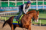 LOUISVILLE, KENTUCKY - APRIL 27: Improbable, trained by Bob Baffert, exercises in preparation for the Kentucky Derby at Churchill Downs in Louisville, Kentucky on April 27, 2019.Scott Serio/Eclipse Sportswire/CSM