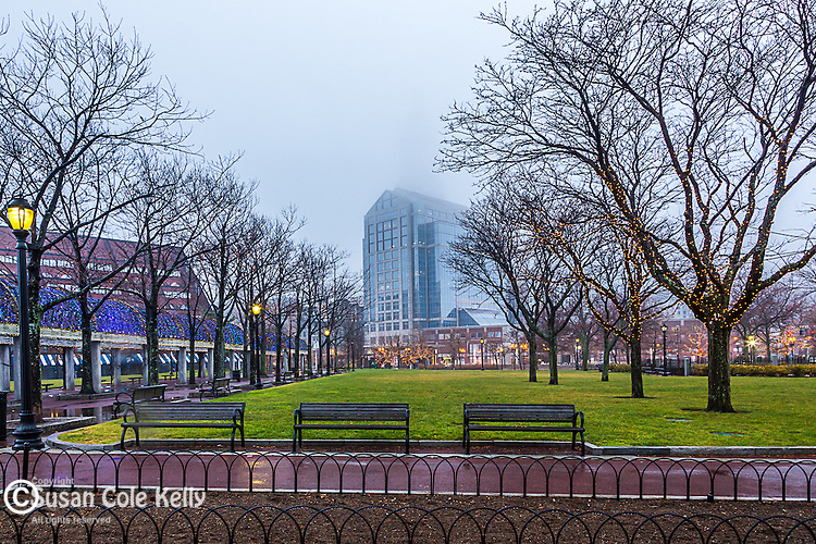 Christmas lights in Waterfront Park, Boston, Massachusetts, USA