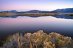 Montana, Southwest, Monida, Centennial Valley, Red Rock Lake wildlife refuge. A pond  reflects the Centennial Range in morning twilight in autumn.