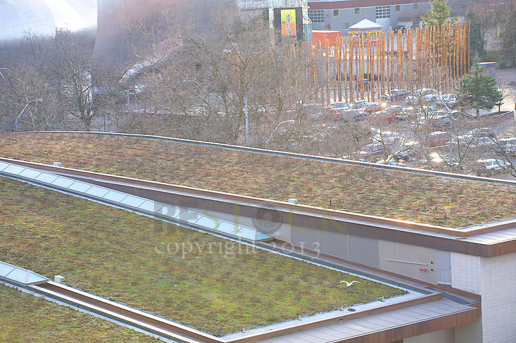 Green Rooftops in Seattle