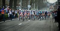 Scheldeprijs 2012..peloton entering Schoten for 1st time