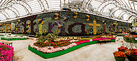 Pollination The Calyx Royal Botanical Gardens