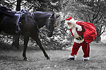 Old West Santa Claus and his horse bowing