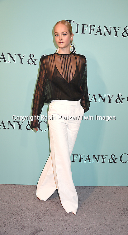 Jean Campbell attends the Tiffany &amp; Co 2017 Blue Book Collection on April 21, 2017 at St Ann's Warehouse in Brooklyn, New York, USA.<br /> <br /> photo by Robin Platzer/Twin Images<br />  <br /> phone number 212-935-0770