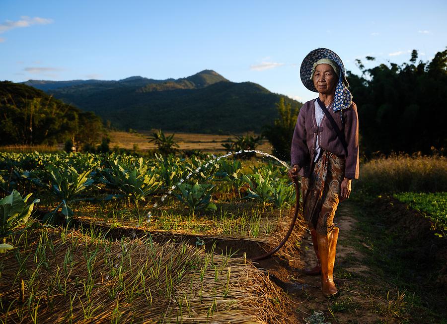 KYAING TONG, MYANMAR - CIRCA DECEMBER 2017: Portrait of farmer woman around Kyaing Tong watering her garden.