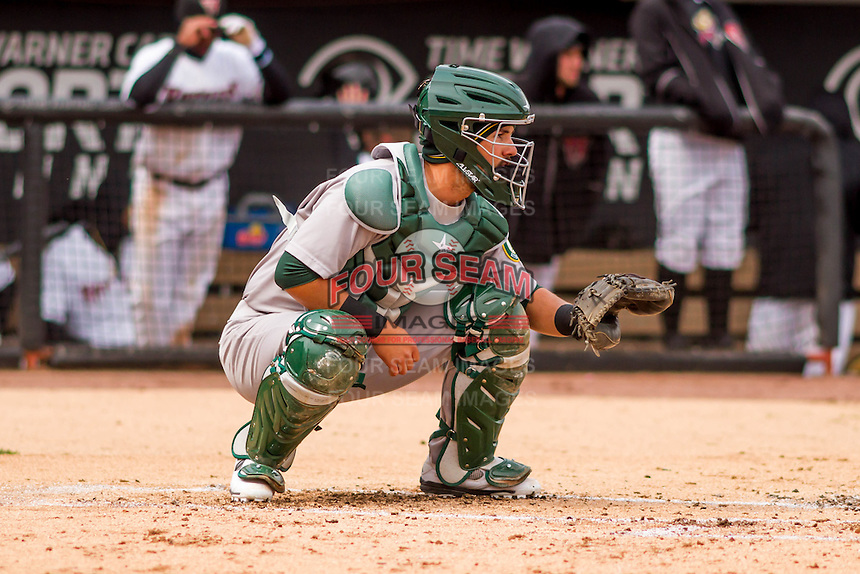 Beloit Snappers catcher Santiago Chavez (15) awaits a warmup pitch during a Midwest League game against the Wisconsin Timber Rattlers on April 10th, 2016 at Fox Cities Stadium in Appleton, Wisconsin.  Wisconsin defeated Beloit  4-2. (Brad Krause/Four Seam Images)