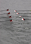 Oars, oar blades, Rowing, race, Opening Day Regatta, Seattle, Washington,