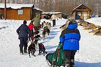 Volunteer handlers help Cindy Galleas team to dog park @ Takotna Chkpt 2006 Iditarod Alaska winter