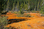 OCHRE BEDS, Kootenay National Park, British Columbia, Canada