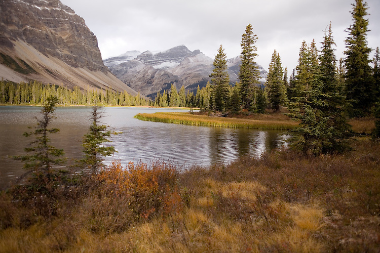 Bow Lake  with it's two glaciers, Crowfoot and Bow, is located along the Icefield Parkway near the Bow Summit, Banff NP.