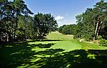 HATTEM - Hole 6, de signature hole van Hattemse Golfclub. COPYRIGHT KOEN SUYK