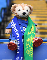 25th January 2020; Madejski Stadium, Reading, Berkshire, England; English FA Cup Football, Reading versus Cardiff City; a fan's Cardiff City mascot