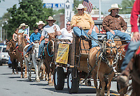 "NWA Democrat-Gazette/ANTHONY REYES • @NWATONYR<br /> Laurinda Joenks rides in the Corner Post Cowboy Church wagon Wednesday, July 1, 2015 during the Rodeo of the Ozarks' Parade on Emma Avenue in Springdale. This year's theme is ""A Patriotic American Classic."""