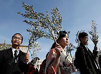 Faithful gather to attend the Palm Sunday Mass in St. Peter's Square at the Vatican, on March 25, 2018<br /> UPDATE IMAGES PRESS IsabellaBonotto<br /> <br /> STRICTLY ONLY FOR EDITORIAL USE