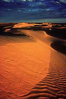 Sanddunes in the Simpson desert on the Queensland part, Australia