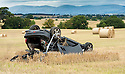 Corn Field Car Crash