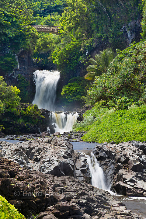 Oheo Gulch in Kipahulu is located in Haleakala National Park and often incorrectly referred to as Seven Sacred Pools, Maui, Hawaii.