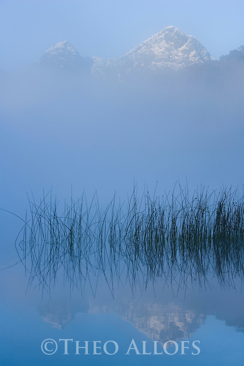 Small lake in morning fog in the Andes; Lake District, Argentina
