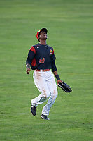 Batavia Muckdogs left fielder Thomas Jones (29) calls for a fly ball during a game against the West Virginia Black Bears on August 5, 2017 at Dwyer Stadium in Batavia, New York.  Batavia defeated West Virginia 3-2.  (Mike Janes/Four Seam Images)