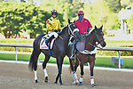 April 18, 2020:Queen Nekia (7) with jockey David Cohen aboard during the Apple Blossom Handicap at Oaklawn Racing Casino Resort in Hot Springs, Arkansas on April 18, 2020. Ted McClenning/Eclipse Sportswire/CSM