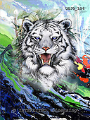 Marie, REALISTIC ANIMALS, REALISTISCHE TIERE, ANIMALES REALISTICOS, paintings+++++WCswhitTigA,USJO196,#A# ,Joan Marie tiger