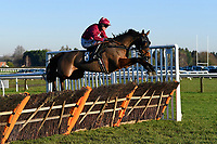 Jully Les Buxy ridden by Tom Bellamy in The Tysers Mares' Handicap Hurdle during Horse Racing at Plumpton Racecourse on 2nd December 2019