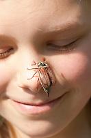 Gemeiner Maikäfer, Feld-Maikäfer, Feldmaikäfer, Melolontha melolontha, auf der Nase eines Mädchen, im Gesicht eines Kindes, Kind, maybeetle, common cockchafer, maybug