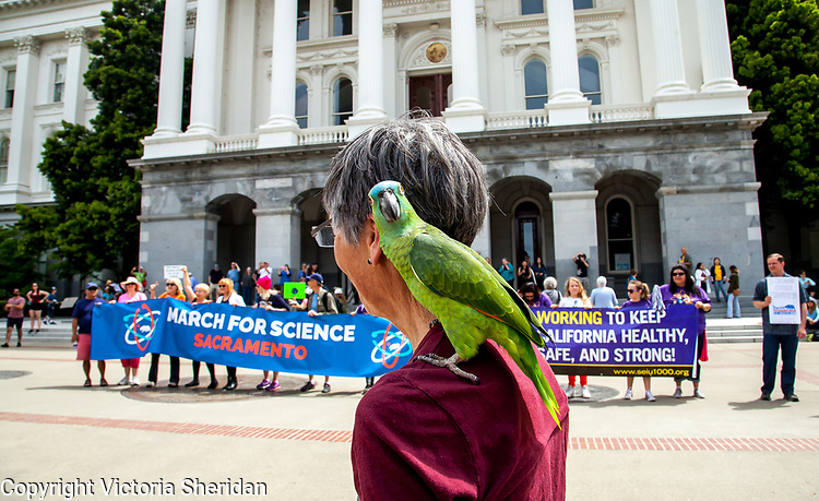 The March For Science -- Sacramento, California -- April 22, 2017