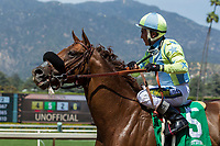 ARCADIA, CA APRIL 22:  #5 Syntax ridden by Rafael Bejarano, after placing in the San Juan Capistrano Stakes (Grade lll) on April 22, 2017 at Santa Anita Park in Arcadia, CA.(Photo by Casey Phillips/Eclipse Sportswire/Getty Images)