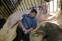 Tyson Zimmer rests on his hog. Zimmer is in the 4-H group Critters 4 Co. NW Washington Fair. August 20, 2009 PHOTOS BY MERYL SCHENKER ..