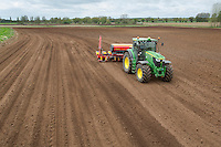 Drilling forage maize with Vaderstad Tempo F8 drill - May; Norfolk