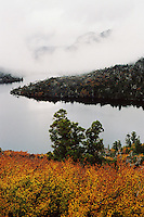 Cradle Mountain hidden in clouds with autumn-tinged deciduous beech (Nothofagus gunnii) and Dove Lake in the foreground,Cradle Mountain Lake St Clair National Park.