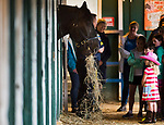 BALTIMORE, MD - MAY 16: Fans on the Breakfast at Old Hilltop tour visit with Slurpee the police horse on the backsides during preparations for the Preakness at Pimlico Race Course on May 15, 2018 in Baltimore, Maryland (Photo by Scott Serio/Eclipse Sportswire/Getty Images)