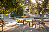Academic Quad trees, benches and sun, March 28, 2018.  (Photo by Marc Campos, Occidental College Photographer)